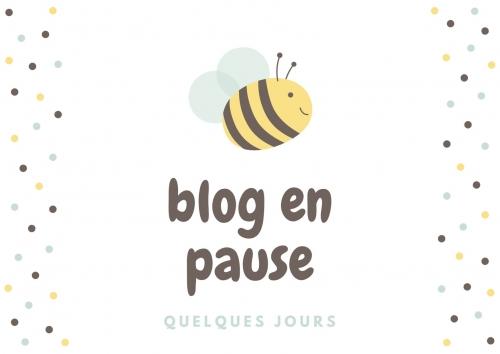 blog en pause (1).jpg