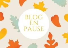 blog en pause.jpg
